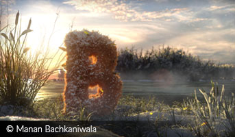Manan Bachkaniwala snow and fur 3D contest